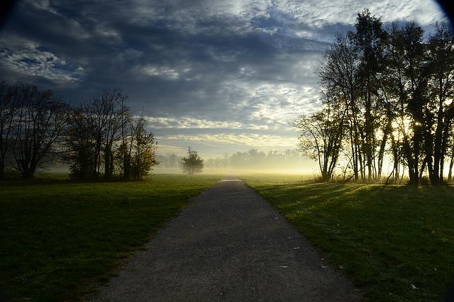 Parco di Monza: cos'è, come arrivarci e cosa vedere