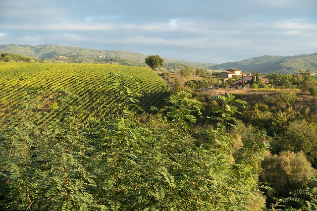 Valle del Chianti: ecco cosa vedere e dove mangiare